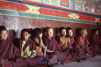view Film Studies of Traditional Tibetan Life and Culture: Ladakh, India, 1978 86.13.3-41OP 7/26/1978 (4:30p.m.) digital asset number 1