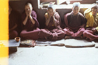 view Film Studies of Traditional Tibetan Life and Culture: Ladakh, India, 1978 86.13.3-42OP 7/26/1978 (2:35p.m.) digital asset number 1