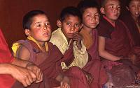 view Film Studies of Traditional Tibetan Life and Culture: Ladakh, India, 1978 86.13.3-43OP 7/26/1978 (2:35p.m.) digital asset number 1