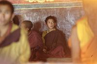 view Film Studies of Traditional Tibetan Life and Culture: Ladakh, India, 1978 7/26/1978 (4:45p.m.) digital asset number 1