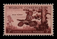 view 3c Wild Turkey single digital asset number 1