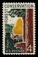 view 4c Forest Conservation single digital asset number 1
