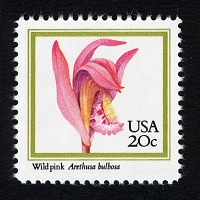 view 20c Wild Pink single digital asset number 1