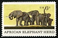 view 6c African Elephant Herd single digital asset number 1