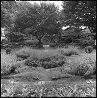 view [Unidentified Garden in Unknown Location]: garden, sundial, lawn, and pergola. digital asset: [Unidentified Garden in Unknown Location] [safety film negative]: garden, sundial, lawn, and pergola.
