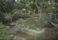 view [Baylis Garden]: moss and stone garden with stone troughs. digital asset: [Baylis Garden]: moss and stone garden with stone troughs.: 2005.