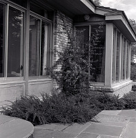 view [Unidentified Garden in New Canaan, Connecticut]: view along side of house by patio. digital asset: [Unidentified Garden in New Canaan, Connecticut] [negative]: view along side of house by patio.