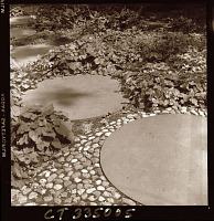 view [Unidentified Garden in Connecticut, No. 1]: detail of patio edge and walkway. digital asset: [Unidentified Garden in Connecticut, No. 1] [photoprint]: detail of patio edge and walkway.