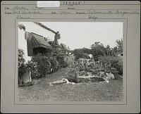 view Untitled Garden in Fort Lauderdale, Florida digital asset: Untitled Garden in Fort Lauderdale, Florida [photoprint]