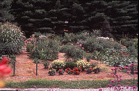 view [Crowfields Community Gardens]: view from north of an individual garden plot (between the green stakes). digital asset: [Crowfields Community Gardens]: view from north of an individual garden plot (between the green stakes).: 2000 Jul.