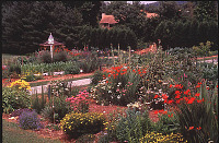view [Crowfields Community Gardens]: partial view of the gardens from the southwest. digital asset: [Crowfields Community Gardens]: partial view of the gardens from the southwest.: 2000 Jul.