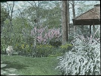 view [Unidentified Gardens in Summit, New Jersey]: flowering shrubs with gazebo and birdhouse. digital asset: [Unidentified Gardens in Summit, New Jersey]: flowering shrubs with gazebo and birdhouse.: [between 1914 and 1949?]