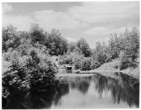 view [Miscellaneous Sites in the Adirondack Mountains]: an unidentified location showing a stream, with a country road going over a small bridge in the background. digital asset: [Miscellaneous Sites in the Adirondack Mountains] [glass negative]: an unidentified location showing a stream, with a country road going over a small bridge in the background.