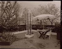 view [Unidentified Garden in New York, New York, No. 4]: raised beds and seating area; note top of large tree in neighboring yard. digital asset: [Unidentified Garden in New York, New York, No. 4] [photonegative]: raised beds and seating area; note top of large tree in neighboring yard.