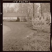 view [Unidentified Garden in Armonk, New York, No. 1]: looking across lawn toward house, showing borders and foundation planting. digital asset: [Unidentified Garden in Armonk, New York, No. 1] [photonegative]: looking across lawn toward house, showing borders and foundation planting.