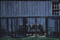 view Unidentified Garden in Cleveland, Ohio: greenhouse-type structure against side of barn. digital asset: Unidentified Garden in Cleveland, Ohio: greenhouse-type structure against side of barn.: 1965 May.