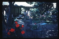 view [Boxly]: patio at teahouse. digital asset: [Boxly]: patio at teahouse.: 1980 Jul.