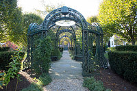 view [Bellevue House Gardens]: The teahouse allée is the main north-south axis of the property. digital asset: [Bellevue House Gardens]: The teahouse allée is the main north-south axis of the property.: 2016 November 11