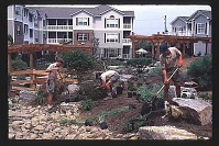 view Post Green Hills: landscape installation teams following behind landscape architect, implementing the design. digital asset: Post Green Hills: landscape installation teams following behind landscape architect, implementing the design.: 1996