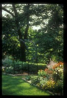 view [Thomas Garden]: perennial beds, looking through the arbor toward the woodland and shade gardens. digital asset: [Thomas Garden]: perennial beds, looking through the arbor toward the woodland and shade gardens.: [between 1990 and 1999]