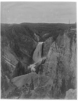 view [Yellowstone National Park]: Lower Yellowstone Falls. digital asset: [Yellowstone National Park] [glass negative]: Lower Yellowstone Falls.