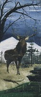view Stag in Winter Landscape digital asset number 1