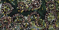view African Jungle Picture: If the Ladies Had Knew the Snakes Wouldn't Bite Them They Wouldn't Have Hurt the Snakes; If the Snakes Had Knew the Ladies Wouldn't Hurt Them They Wouldn't Have Bit the Ladies digital asset number 1