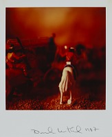 view Untitled from the series Wild West SX-70 digital asset number 1