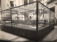 view War Collection in the Natural History Building Rotunda digital asset number 1