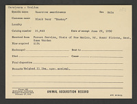 view Smokey Bear's Animal Card, National Zoological Park digital asset number 1