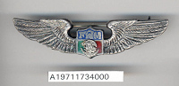 view Badge, Pilot, Mexican Air Force digital asset number 1