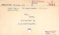 thumbnail for Image 5 - Bag