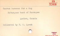 thumbnail for Image 3 - Dog harness