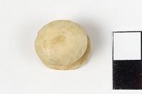 thumbnail for Image 1 - Labret/Lip plug