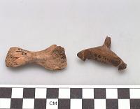 thumbnail for Image 3 - Animal bone