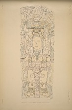 Stela N. (Pages 55_57) South face drawn from photographs