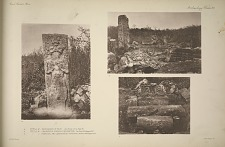 a. Stela, 2. Photographs of face. b. Stela, 4. Fragments showing inscription. c. Stela, 4. Pedestals and (excavated) supports ...