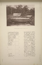 Stellae 8 and 9. See Plate 110 & Pages 67-68. Stela 8. Drawing of the inscription, see Page 67.