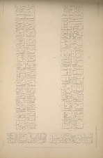 Stela C. Drawing of the inscription. See Plates 16-20 and page 9.