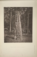 Stela F. North face, See Plate 36b, and pages 12-13.