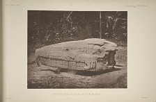 Monolithic animal G. East side, See Plate 44 and Page 14.