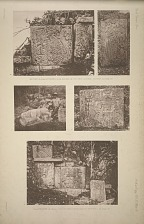 Mound 13. Plate 2, Figures of (a) jaguar, (b) vulture, (c) dead jaguar, See Page 33. (d & e) Mound 14, Plate 2. Sculptured stone-facing of mound, See Page 34.