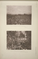 (a) The colonnade, No. 19 (Plate 60), looking south. See Page 39. (b) The colonnade, No. 21 (Plate 60), looking west. See Plate 65a, and Pages 39-40.