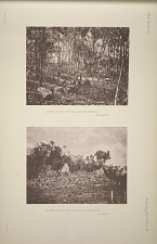 (a) The court, No. 30 (Plate 60), the interior. See page 42. (b) The court, No. 30 (Plate 60), the exterior. See Page 42.