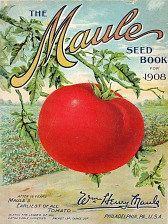 Maule's earliest of all tomato