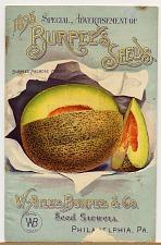 Burpee's melrose melon
