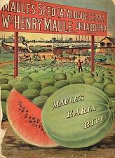 Maule's early ripe