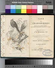 Title page and frontispiece: Canaries