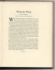 p. 73 Mountain sheep description