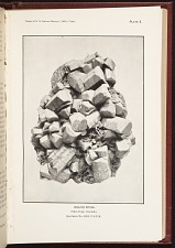 Amazon Stone. Pikes Peak, Colorado. Specimen No. 81813, U.S. N.M.